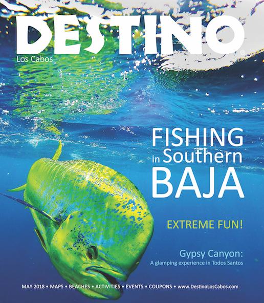 Latest-Destino-Issue